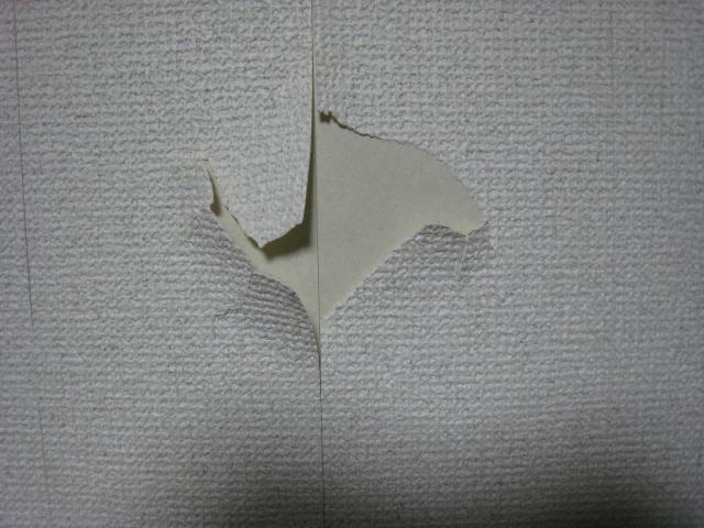 クロスが、やぶれてしまったとき クロス張替え 壁紙張替え 各務原市  リフォーム